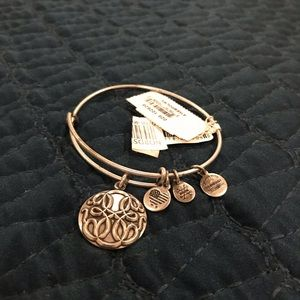 Silver Alex and Ani Path of Life Slider Bracelet